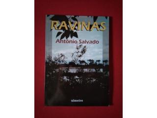 "Livro ""Ravinas"""