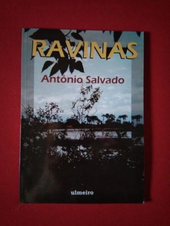 livro-ravinas-big-0