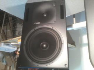 2 Monitors de estudio GENELEC 1032A
